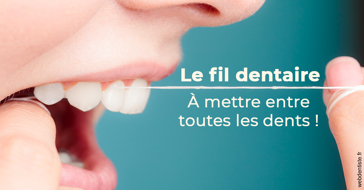 https://selarl-drs-geslot-branly.chirurgiens-dentistes.fr/Le fil dentaire 2